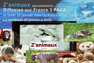 Z'animaux Diffusion France 3 PACA